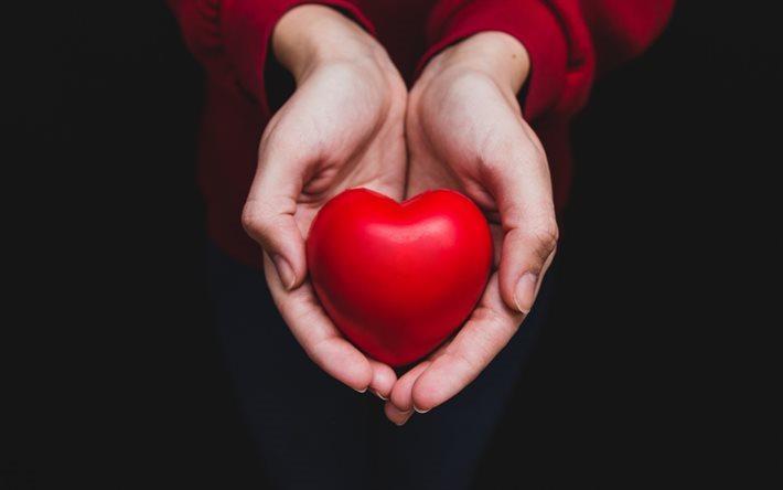 thumb2-red-heart-hands-love-heart-in-hands